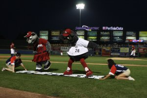 IronPigs Mascots